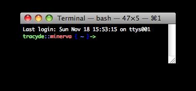 My Custom Bash Terminal